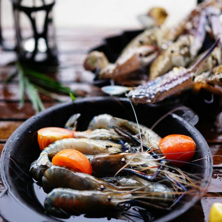 cvuipata fresh seafood